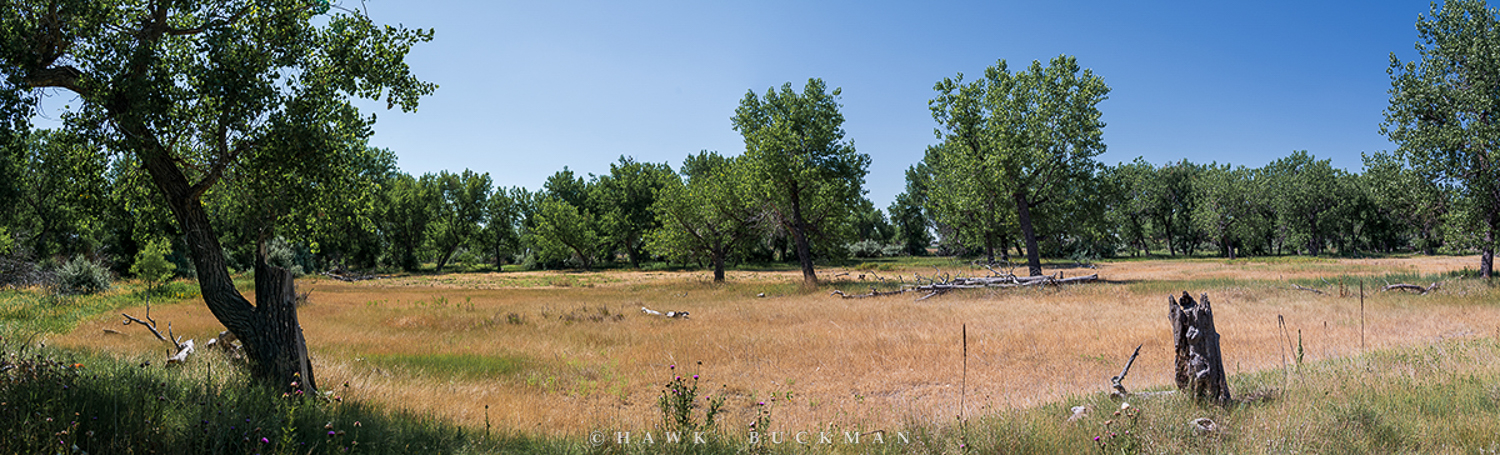 Location of the Fort Laramie Mounted rifleman campsite according to Nebraska Historical Society records at the signing of the 1851 Horse Creek Treaty. Southwest of the Village of Morrill, Nebraska July 12, 2020. – Photograph by ©2020 Hawk Buckman