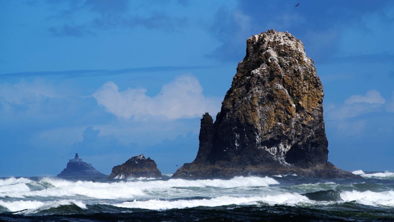 Basalt Rock Outcrop - Oregon Coast - Cannon Beach